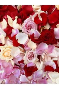 Лепестки роз ПРЕДЗАКАЗ 1 ДЕНЬ