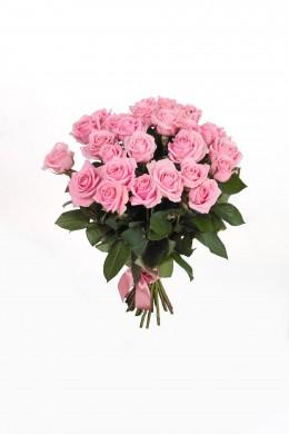 Роза Pink Avalanche