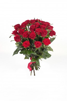 Роза Prestige
