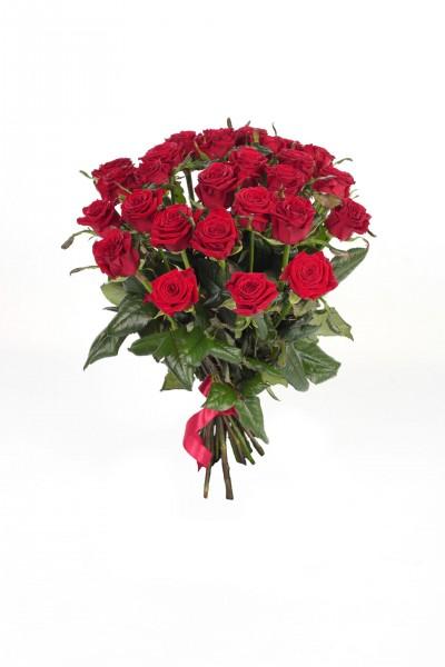 Роза Prestige в Томске