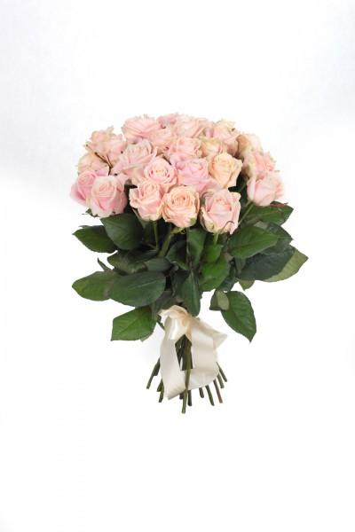 Роза Sweet Avalanche в Томске